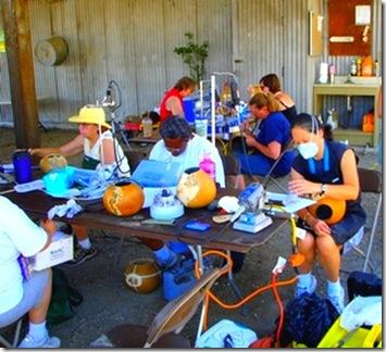 gourd sweatshop