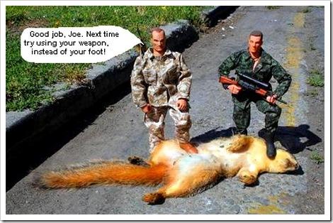 dead squirrel in gutter