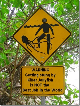 jelly fish warning sign