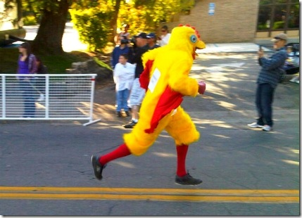 running chicken