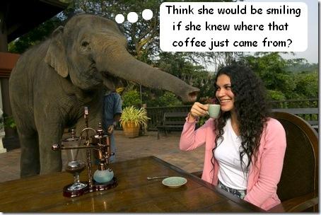 elephant coffee drinker