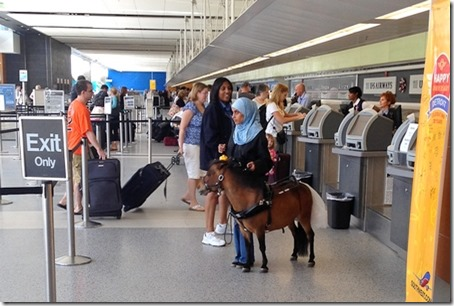 SWA comfort horse at ticket counter