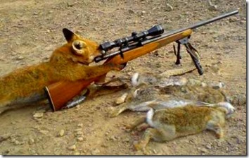 animal with hunting rifle