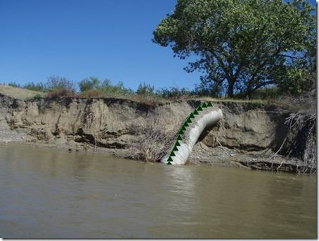 tremors worm